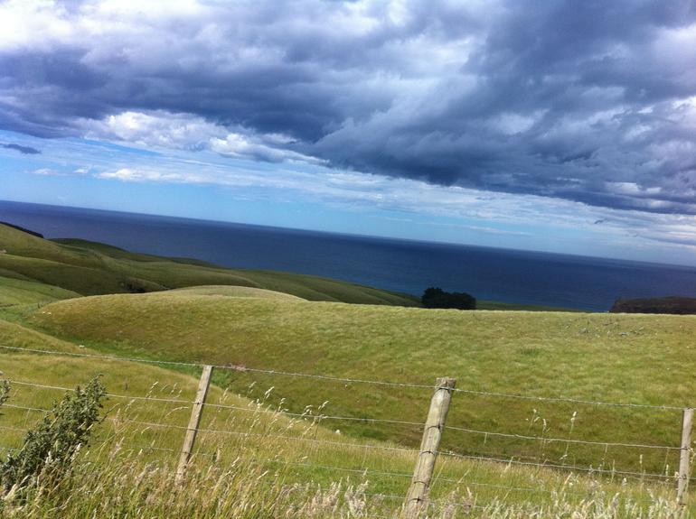 On the way to the seal and penguin colonies - Dunedin & The Otago Peninsula