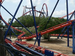 Photo of Tampa Busch Gardens Tampa Bay attractions