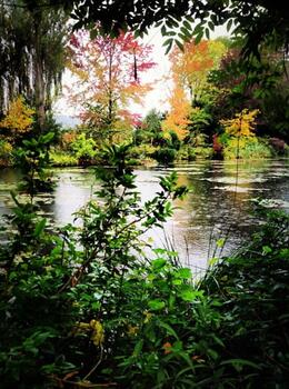 Photo of Paris Giverny and Monet Canvas of nature