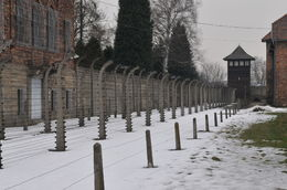 Photo of Krakow Auschwitz-Birkenau Museum Half-Day Trip from Krakow Electric Fence  and  Guard Tower