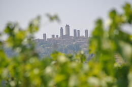 a look at San Gimignano while we're touring a winery in the Chianti region. , Angela B - August 2012