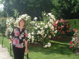 The grounds at Schonbrunn Palace go on and on and on! They have many beautiful rose trees there like the one my wife is standning in front of., David F - July 2010