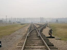 Train tracks towards the gas chambers. - January 2008