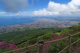 Our travel companions - Puke and Harold looking north towards Naples from the crater , Peter K - June 2016