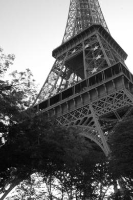Photo of Paris Paris City Hop-on Hop-off Tour Eiffel Tower