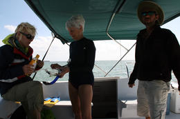 Photo of Key West Shipwreck Snorkel and Wild Dolphin Encounter Tess, Janet and Captain Noah