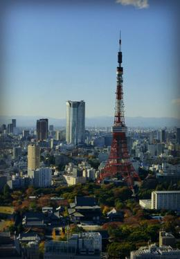 Photo of Tokyo Tokyo Highlights Afternoon Tour and Sumida River Cruise Tokyo Tower