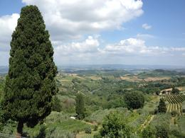 Photo of Florence Siena and San Gimignano Day Trip from Florence Tuscan countryside at San Gimignano