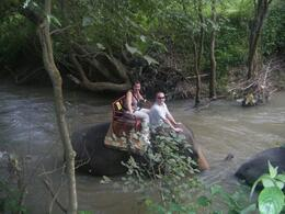 Photo of Bangkok Khao Yai National Park and Elephant Ride Day Trip from Bangkok Us and Cherry the elephant