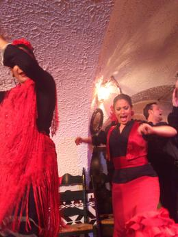 Photo of Barcelona Flamenco Night at Tablao Cordobes DSC_2524.jpg