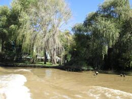 Photo of Buenos Aires Tigre Delta Day Trip from Buenos Aires View from the El Tigre riverboat
