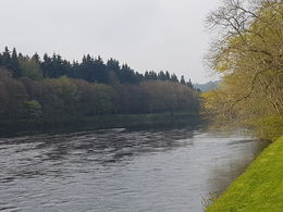 View near Dunkeld cathedral , Lisa W - May 2016