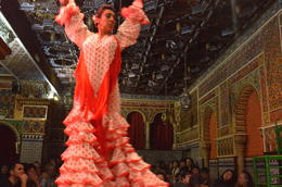 Flamenco Show, MARIA - March 2014