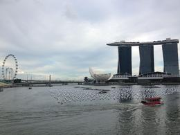 Photo of Singapore Singapore City Tour with optional Singapore Flyer Marina Bay