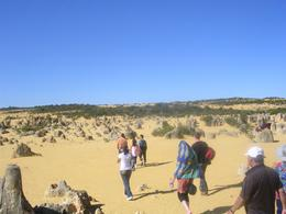 Photo of Perth Pinnacles Desert, Koalas and Sandboarding 4WD Day Tour from Perth The start of the tour