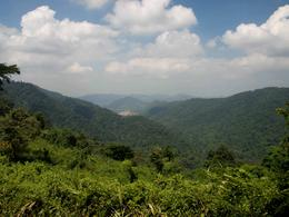 Photo of Bangkok Khao Yai National Park and Elephant Ride Day Trip from Bangkok what a view