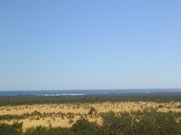 Photo of Perth Pinnacles Desert, Koalas and Sandboarding 4WD Day Tour from Perth Desert right beside the Indian Ocean