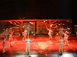Photo of Beijing Beijing Acrobatic Show and Peking Duck Banquet Night Tour DSCN1002