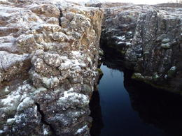 One of the many glacial lakes found in the fissures around þingvellir , tonnic - January 2011