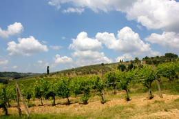 View of the Chianti Region , Lidia - July 2011