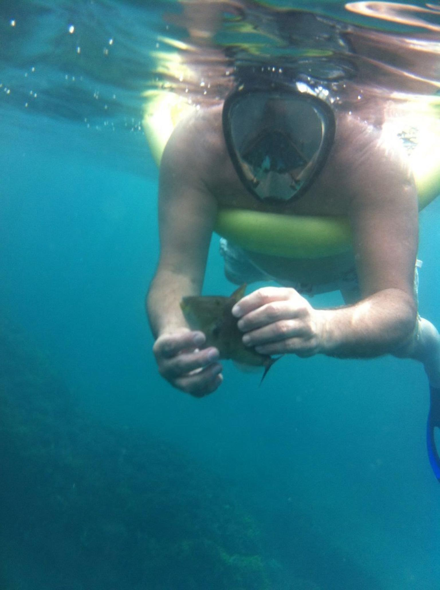 Guanacaste Snorkel and Sunset Cruise