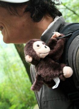 These cute monkeys are sold along Emei Shan. They have velcro hands so they can be attached to our backpacks. - June 2012