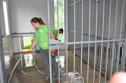 Volunteering at the Panda Center - August 2014