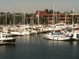 Photo of   Charles River marina