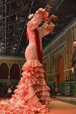 Photo of   Flamenco Show