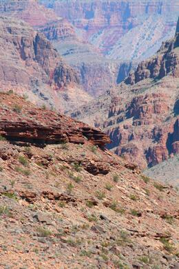 Photo of Las Vegas Grand Canyon Helicopter Tour from Las Vegas IMG_6066