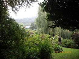 Wandering through the water garden at Giverny on a perfect day, Penny S of Adelaide - October 2010