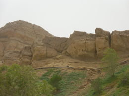 On the road to Jebel Hafeet! , francoise s - April 2015