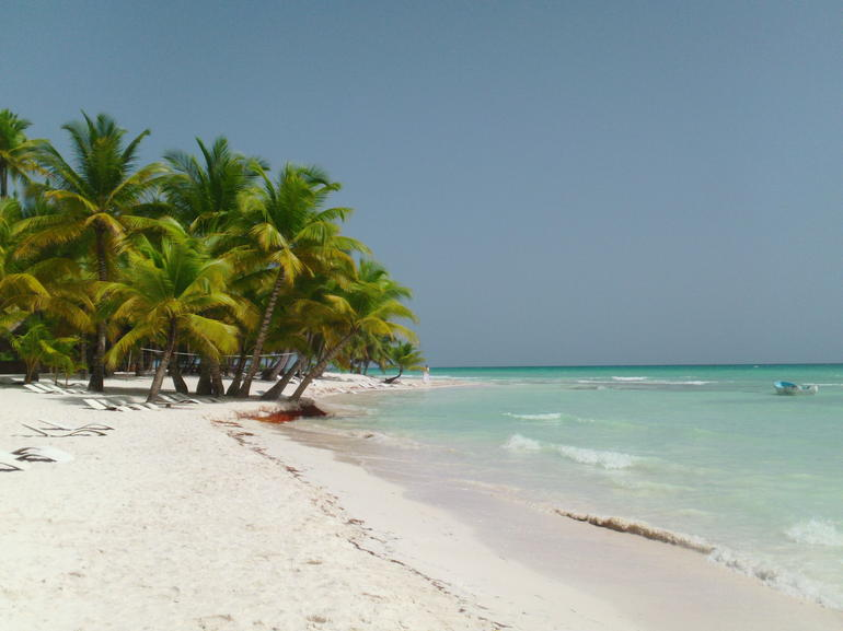 Picture of beach at Saona Island