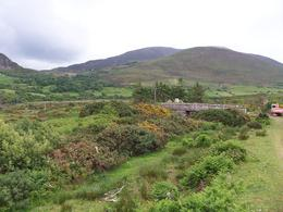 Photo of Dublin Ring of Kerry Rail Trip from Dublin The many greens of Ireland