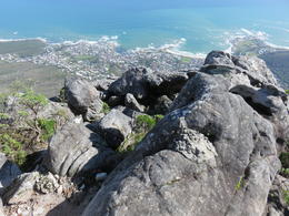 Photo of Cape Town Table Mountain Hike in Cape Town View from the Top!