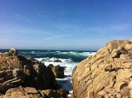 Photo of San Francisco Monterey, Carmel and The 17-Mile Drive Day Trip 17 Mile Drive