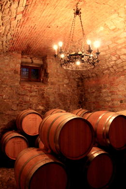 Wine cellar in Tuscany. , Monique S - August 2014