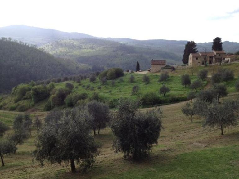 Chianti Countryside - Florence