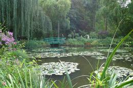 Monet's famous Waterlily Pond - a very peaceful place, I can understand why he liked to paint there., Amanda W - October 2007