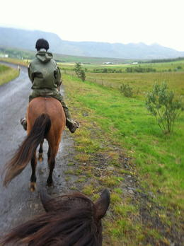 Photo of Reykjavik Viking Horse-Riding and Gulfoss and Geysir Express Tour from Reykjavik Riding on a rainy day