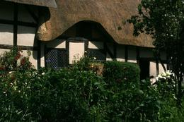 The thatched roof at Anne Hathaway's Cottage - July 2008