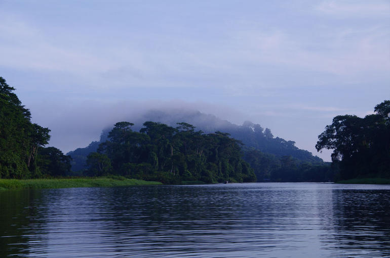 Tortuguero National Park - San Jose