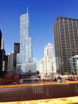 Photo of Chicago Chicago City Hop-on Hop-off Tour Wrigley Building  and  Trump Tower