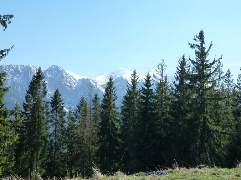 Zakopane and Tatras Mountains Day Tour from Krakow - Krakow