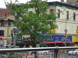 Just one of many Chinese restaurants in this vibrant bustling part of New York - view from the top of th bus. , Judith M - May 2012