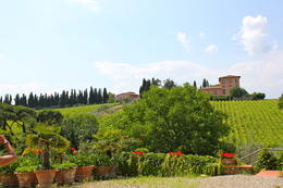Photo of Florence Horse Riding in Chianti Day Trip from Florence View of Gardens