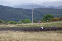 Photo of Dublin Ring of Kerry Rail Trip from Dublin Peat being cut