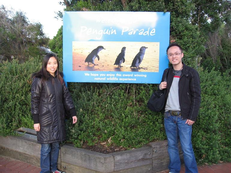 Penguin Parade - Melbourne