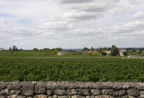 Photo of Bordeaux Bordeaux Wine Tours