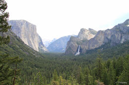 Photo of San Francisco Yosemite National Park and Giant Sequoias Trip IMG_4250